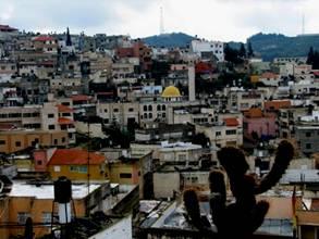 Palestinian Town