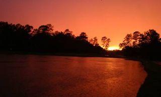 Sunset Wilding Ponds