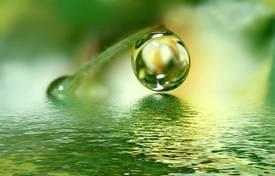 HaShem's Latter Rain